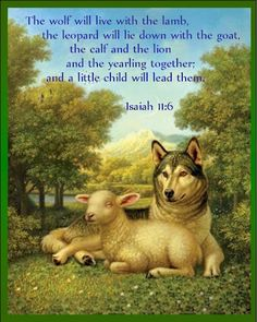wolf-lamb